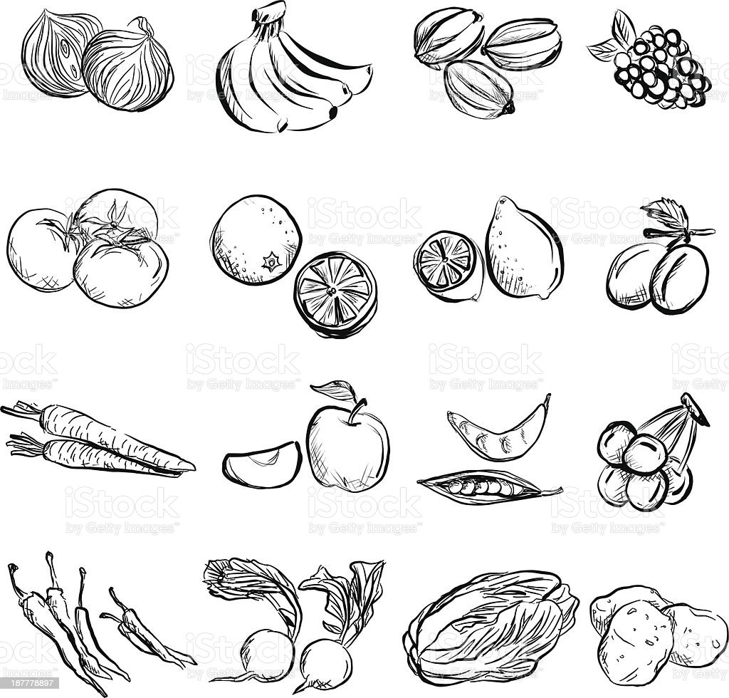 Fruit and vegetable in charcoal sketch style vector art illustration
