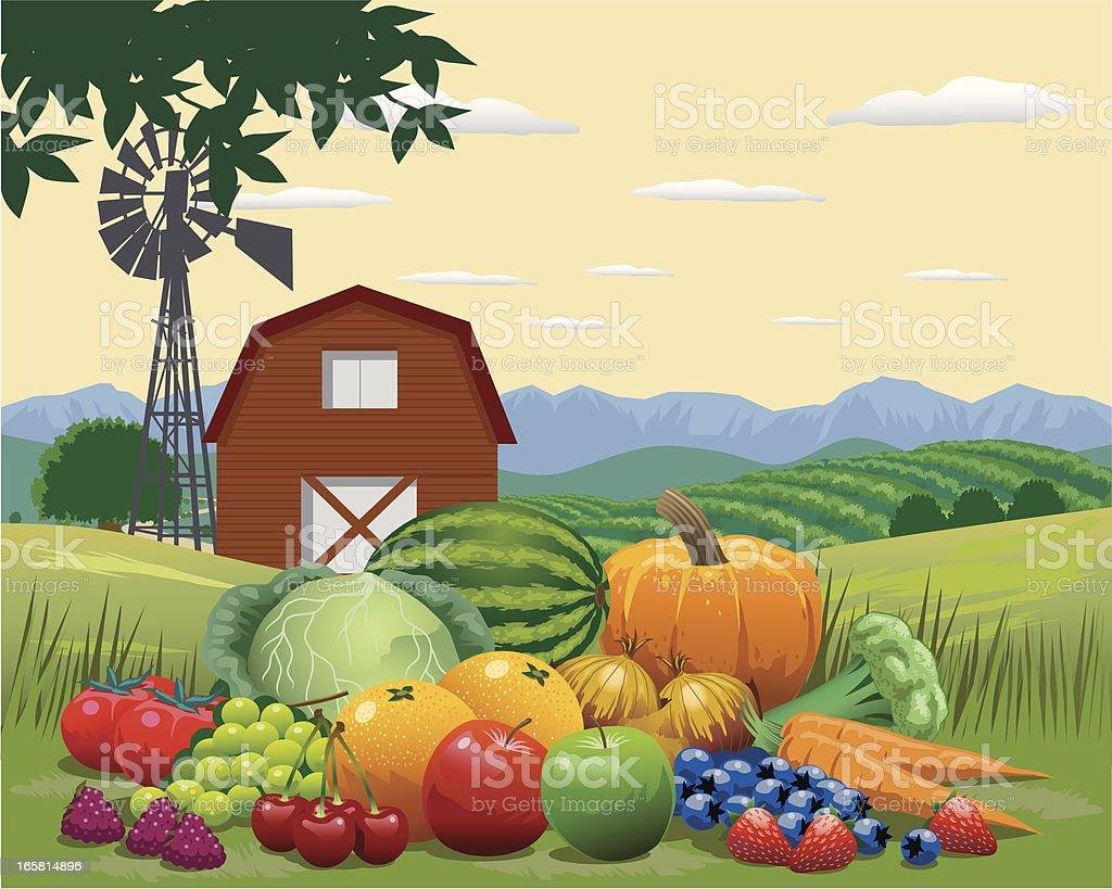 Fruit and Vegetables Harvest vector art illustration