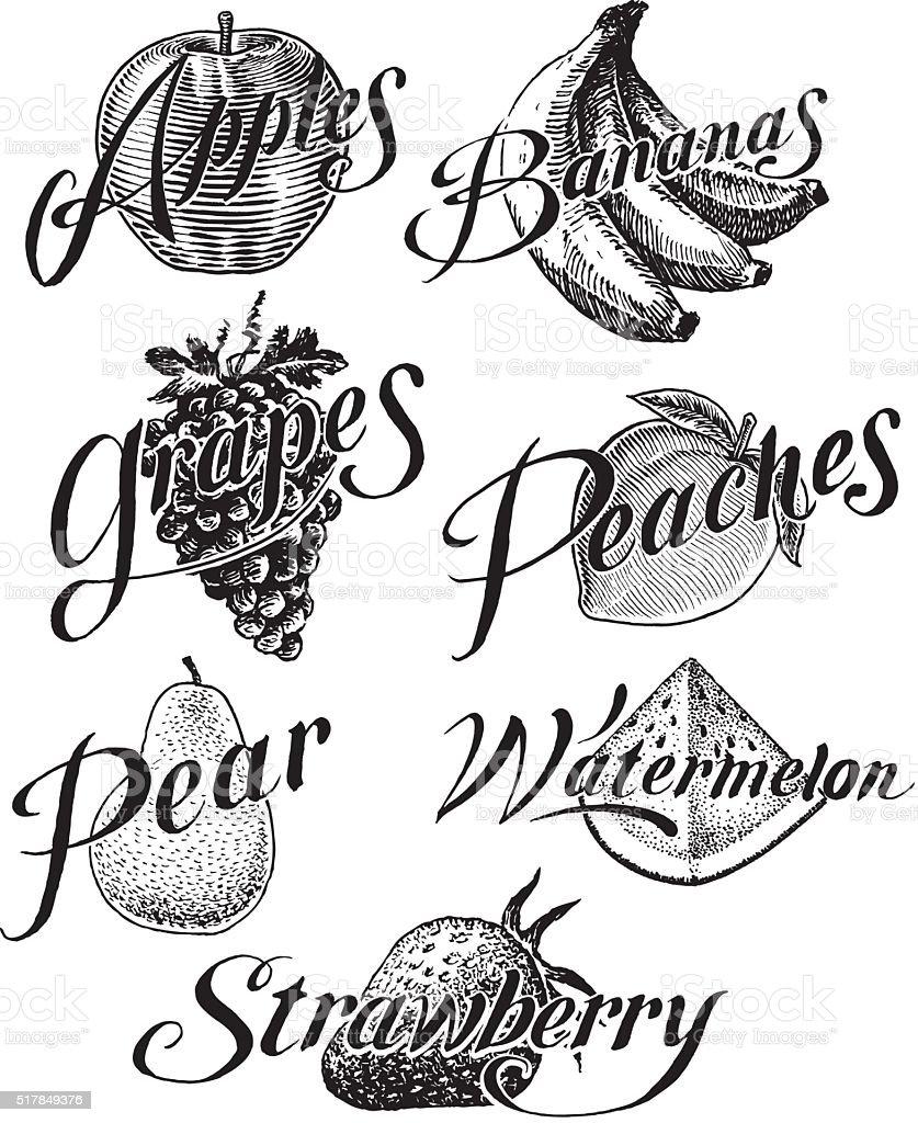 Fruit, Apple, Banana, Grape, Strawberry, Peach, Pear, Watermelon vector art illustration