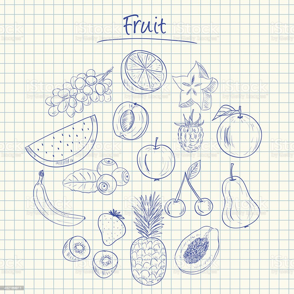 Fruit doodles - squared paper royalty-free stock vector art