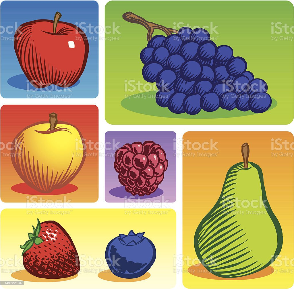 Fruit Group (Color) vector art illustration