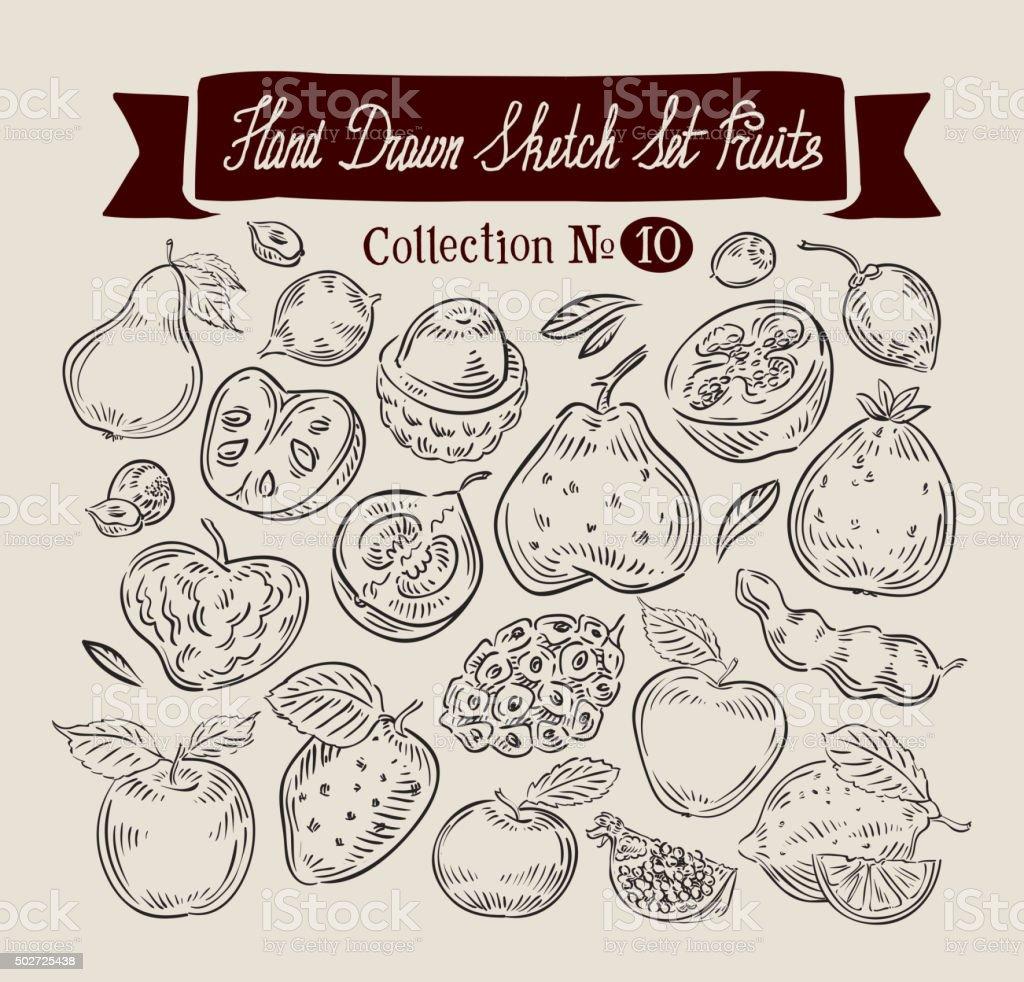 Fruit. Hand drawn vector sketch set food. Vector illustration vector art illustration