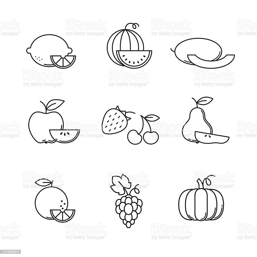 Fruit icons thin line art set vector art illustration