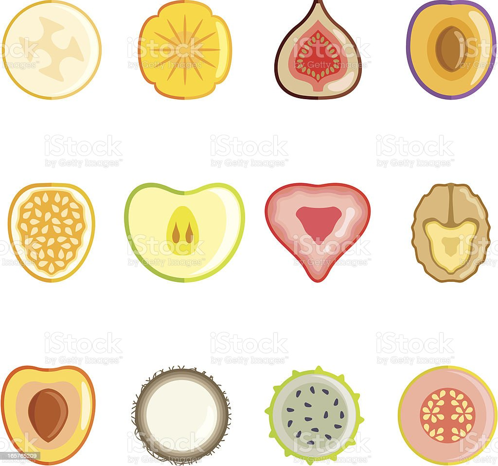 Fruit slices series II royalty-free stock vector art
