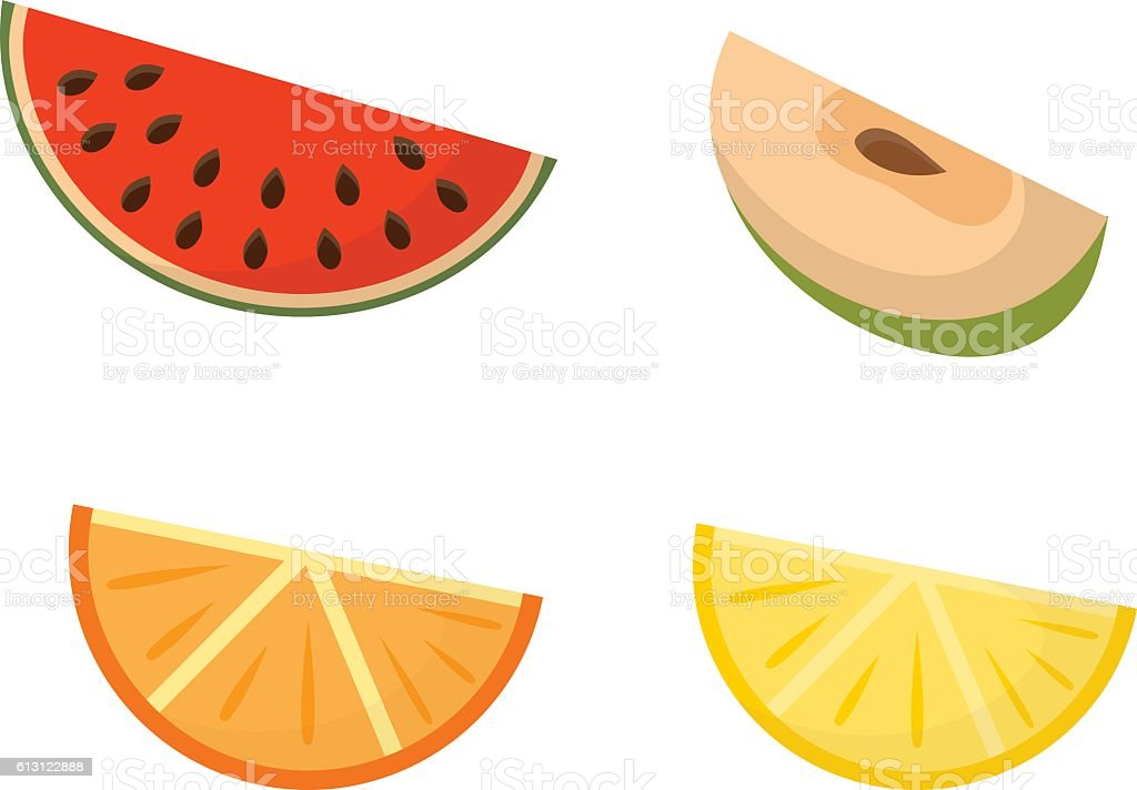 Fruit slices vector set. vector art illustration