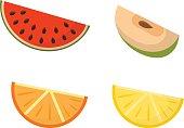 Fruit slices vector set.