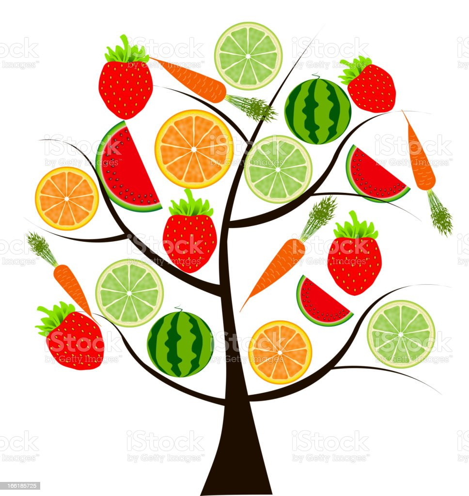 fruit tree for your design vector illustration royalty-free stock vector art