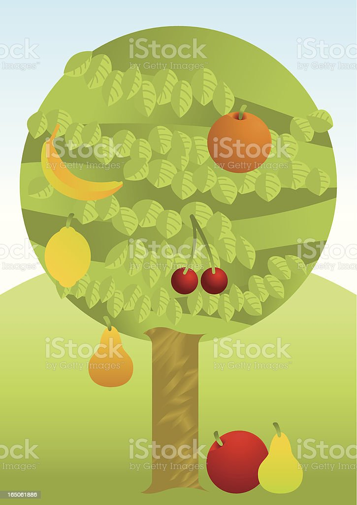 Fruit Tree - Multiple! Coloured. royalty-free stock vector art