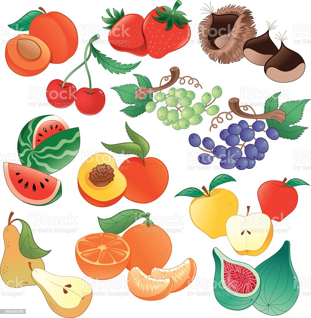 Fruit royalty-free stock vector art