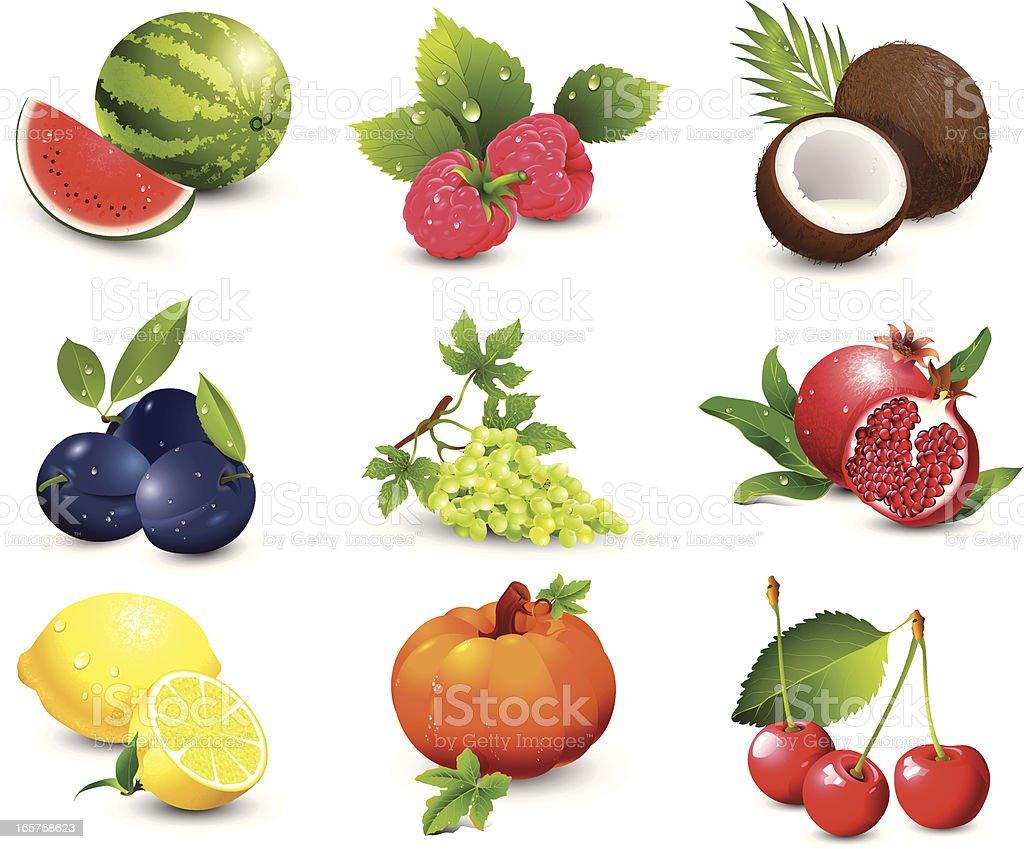 Fruit vector art illustration