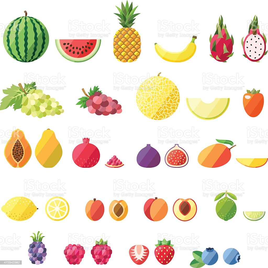 Fruit vector set. Modern flat design. vector art illustration