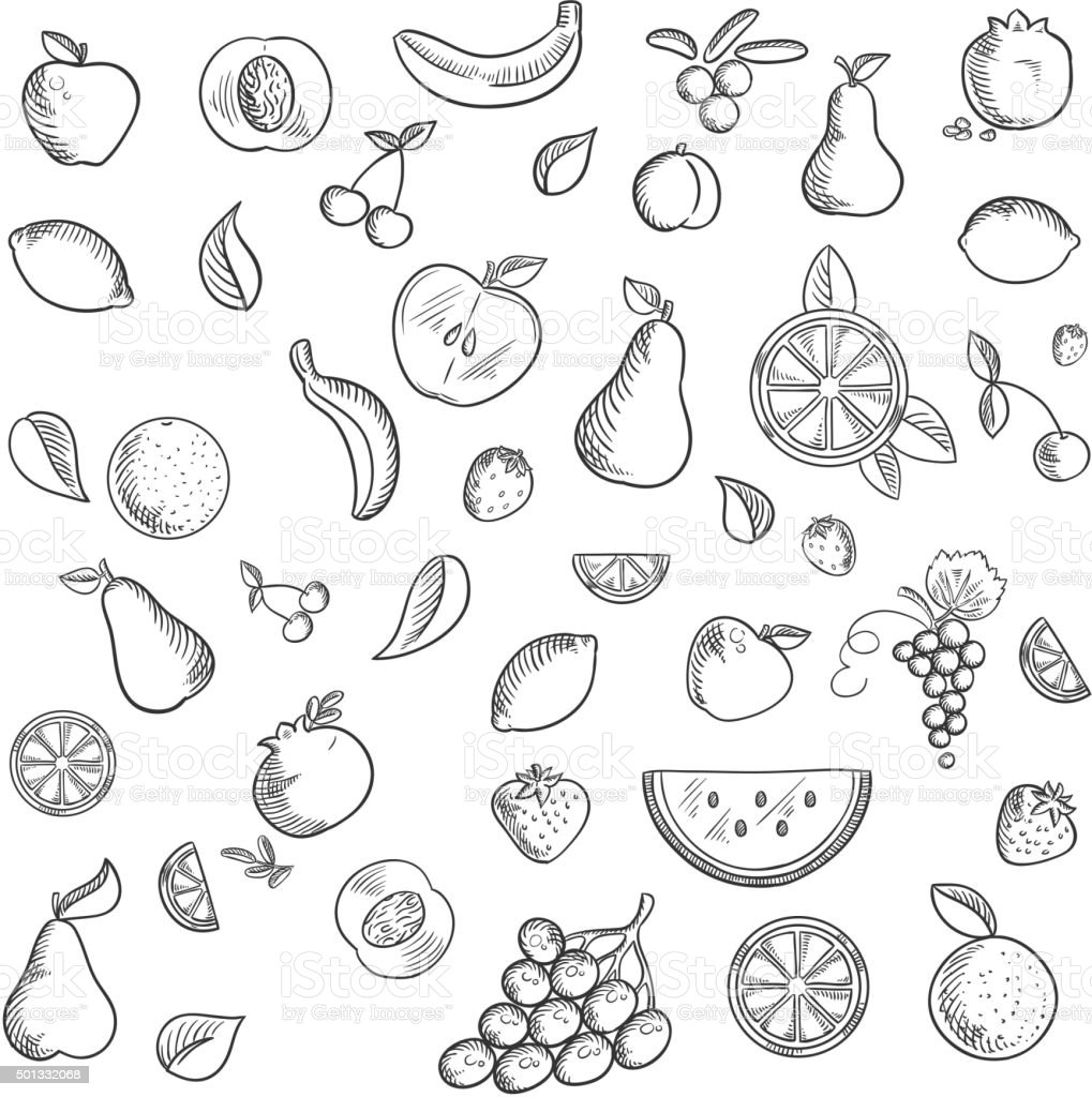 Fruits and berries sketched icons set vector art illustration
