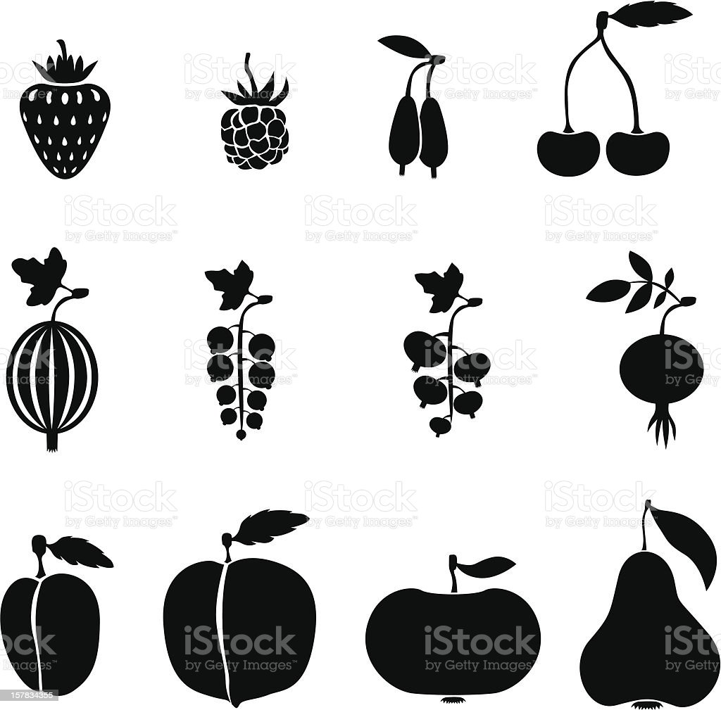 Fruits and Berries royalty-free stock vector art