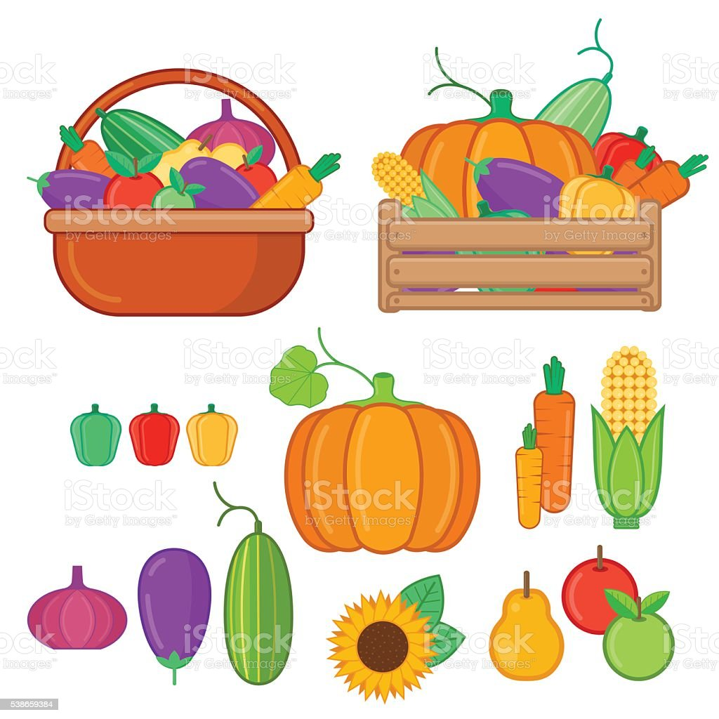 Fruits and vegetables collection in flat style vector art illustration