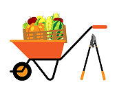 Fruits and vegetables in wheelbarrow vector illustration