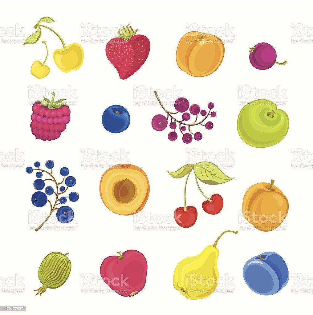 Fruits Berries  Set royalty-free stock vector art