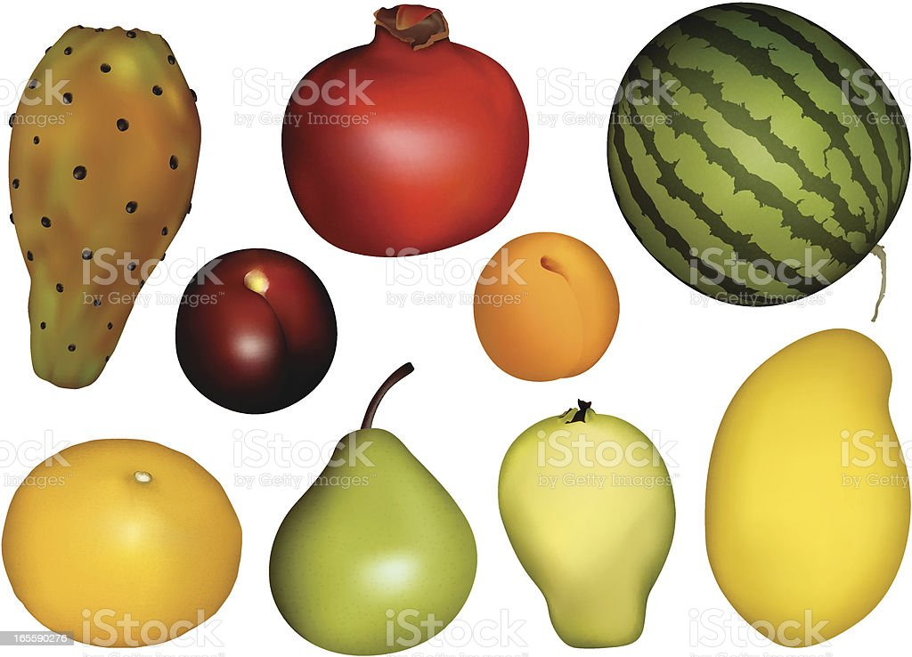 Fruits collection lll vector art illustration