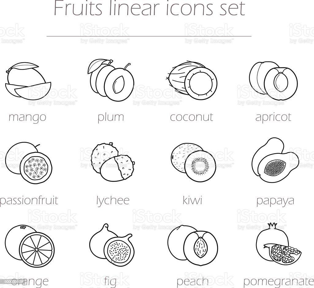 Fruits linear icons set vector art illustration