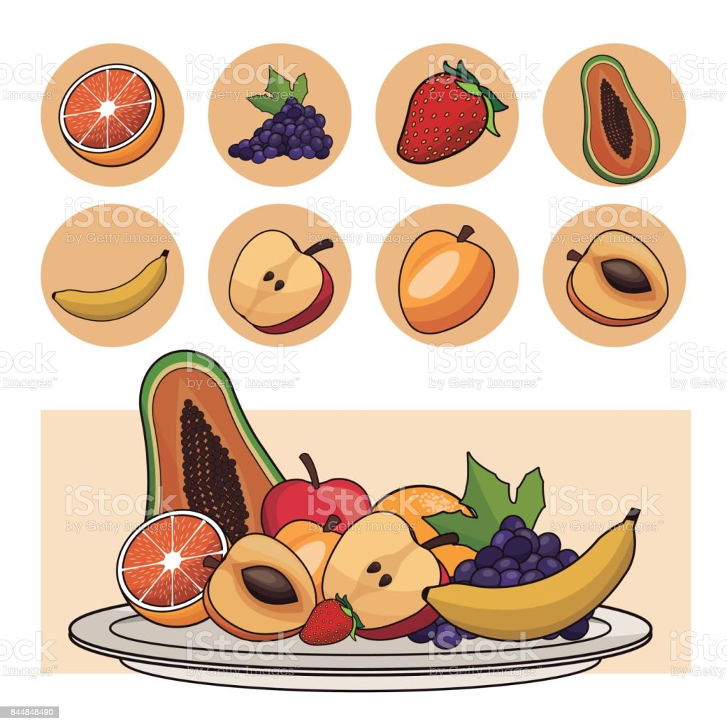 fruits nutrition salad plate icons vector art illustration