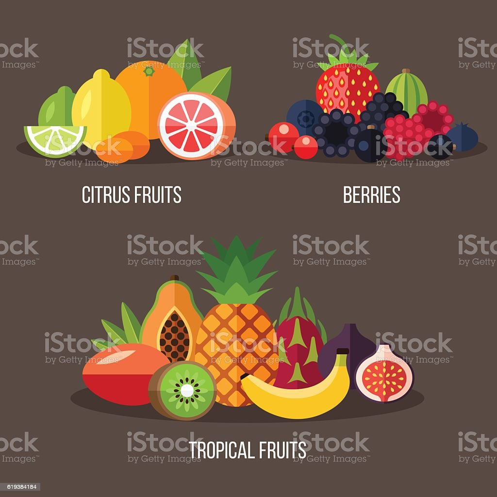 Fruits set vector art illustration