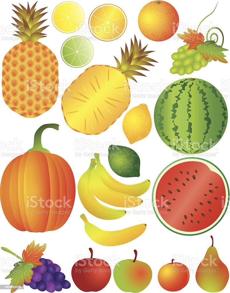 Fruits Set Vector Illustration royalty-free stock vector art