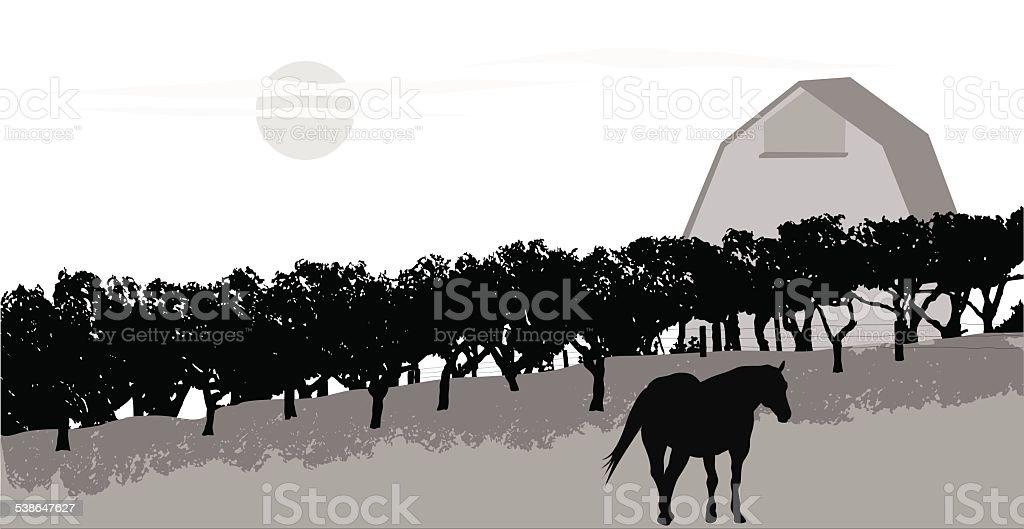 FruitTrees vector art illustration
