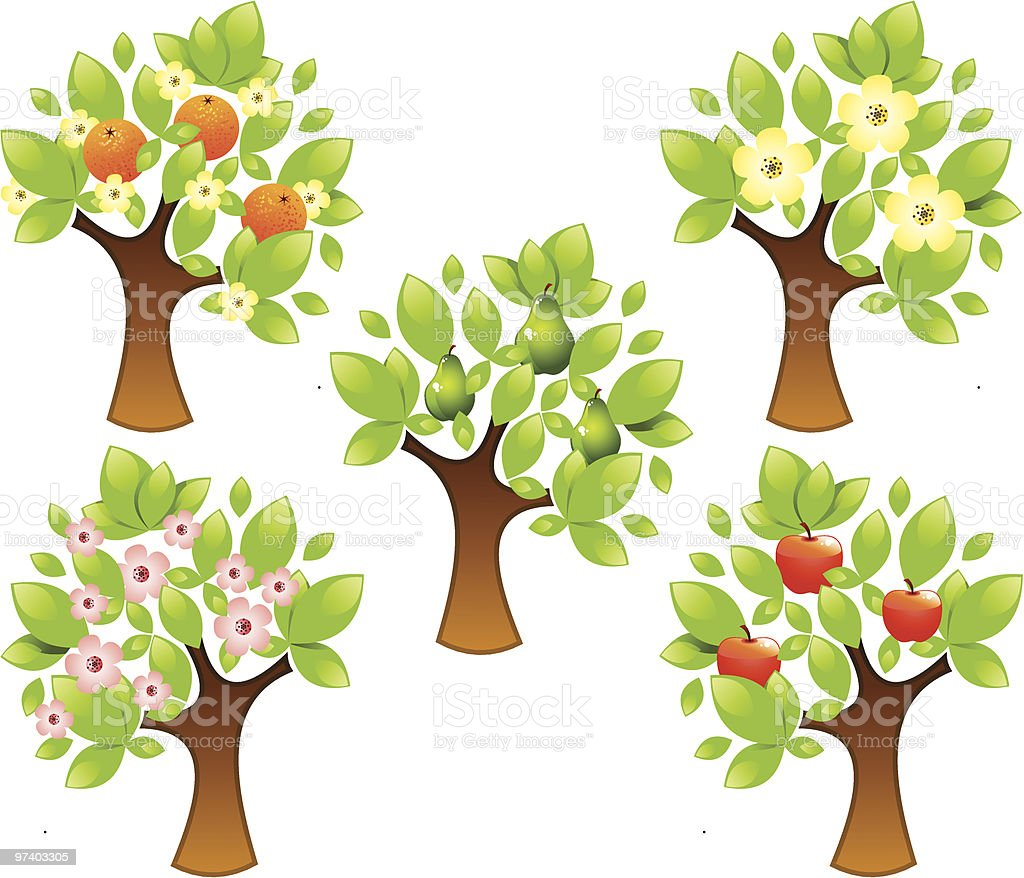 Fruity trees royalty-free stock vector art