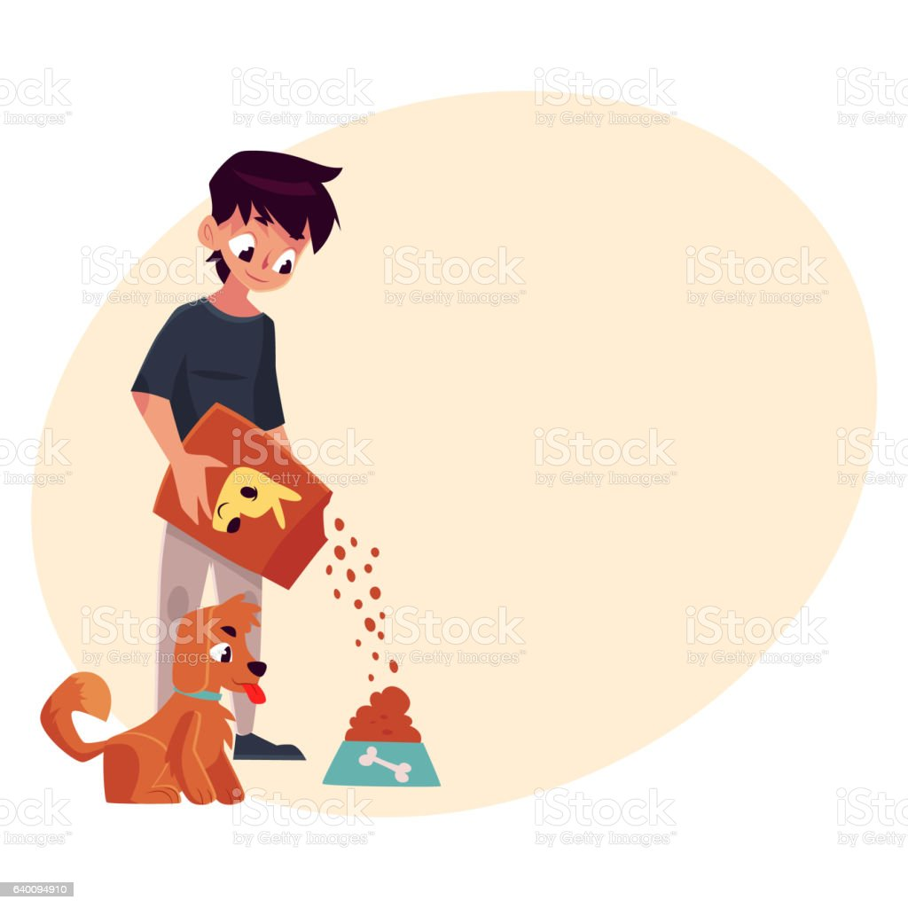 Full length portrait of boy giving food to puppy, dog vector art illustration