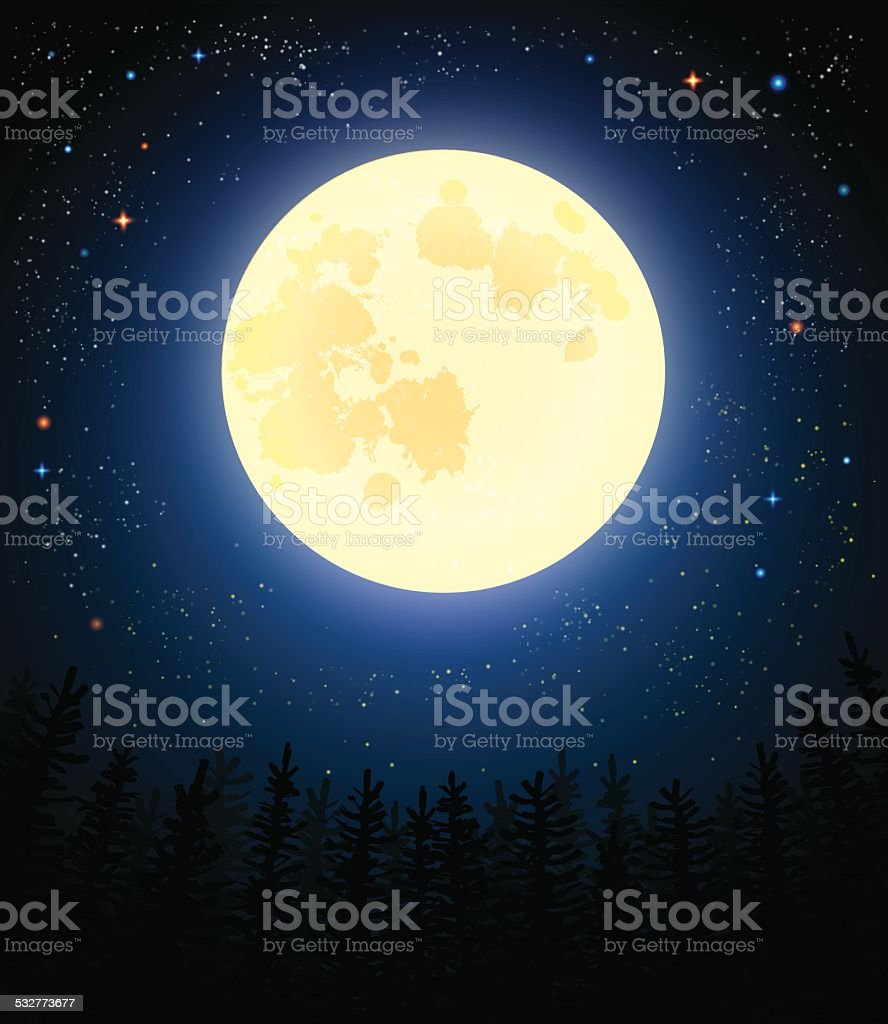 Full moon shines on a pine forest. vector art illustration