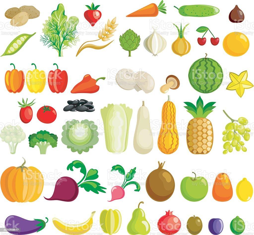 Full set of fruits and vegetables vector art illustration