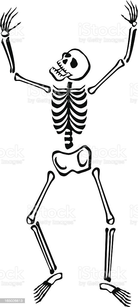 Funny Bones royalty-free stock vector art