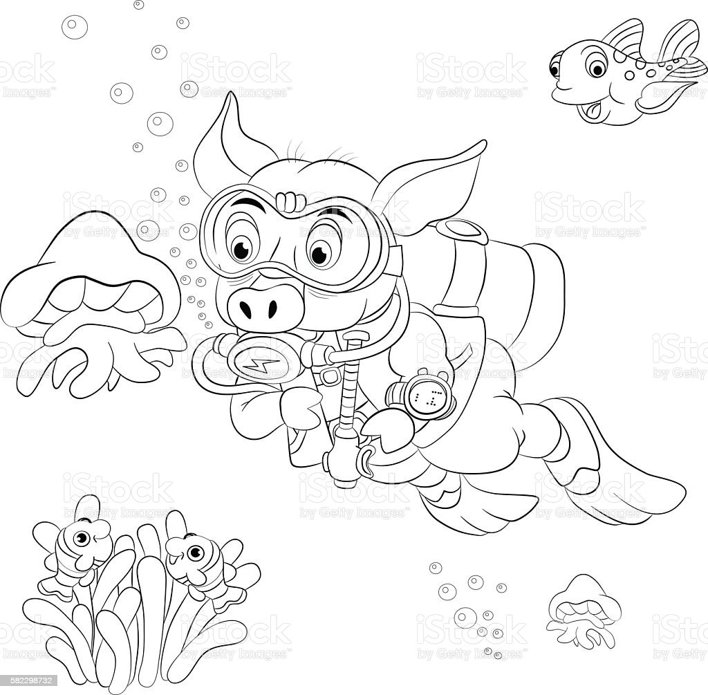 Funny cartoon pig diver looking at jellyfish. Coloring book vector art illustration