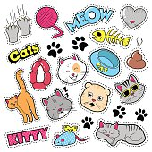 Funny Cats Badges, Patches, Stickers