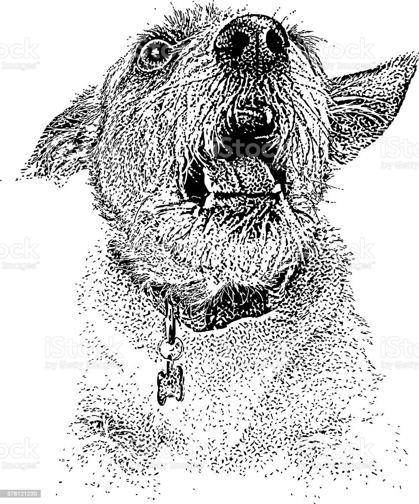 Funny Dog Shouting Announcement vector art illustration