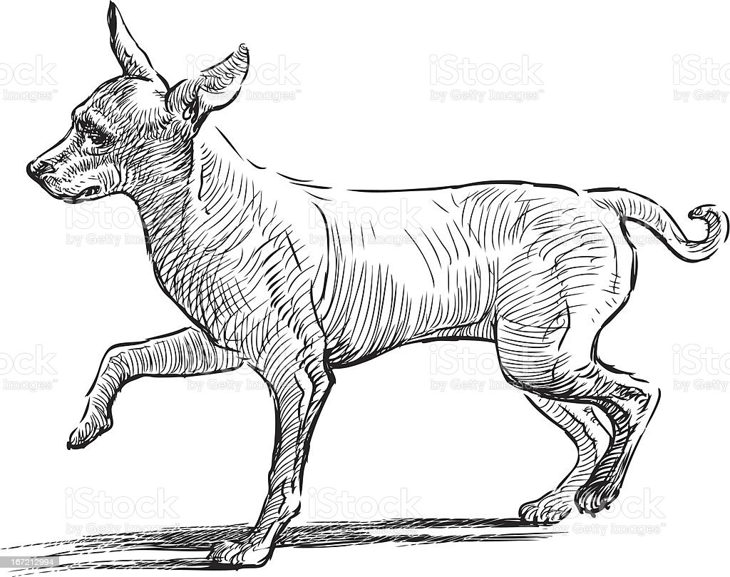 funny dog royalty-free stock vector art