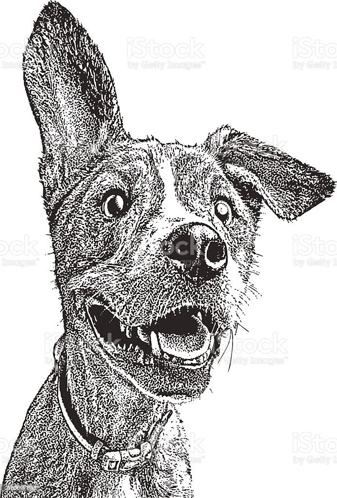 Funny, energetic young dog with floppy ear vector art illustration