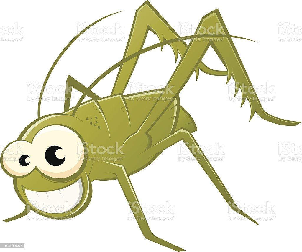 funny green grasshopper vector art illustration