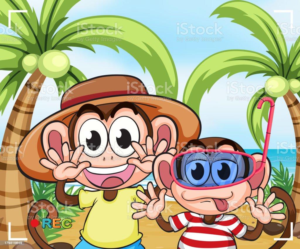 Funny monkeys at the beach royalty-free stock vector art