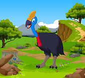 funny peacock cartoon with mountain cliff landscape background