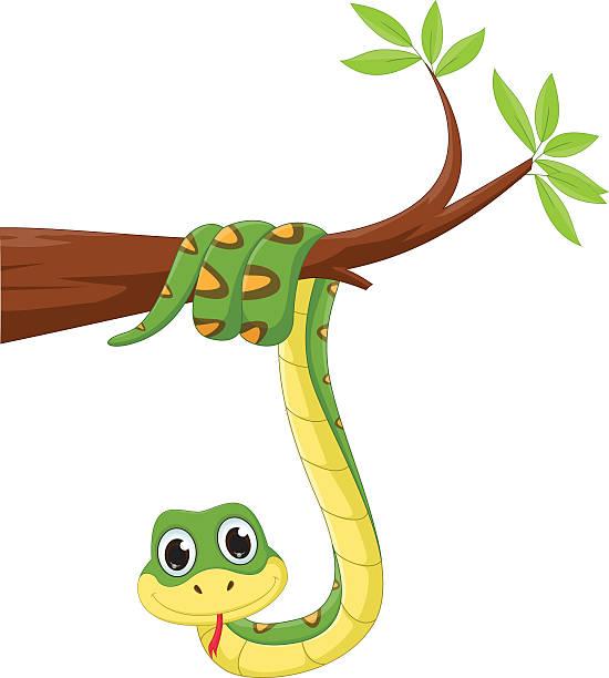 Snake Head Clip Art, Vector Images & Illustrations - iStock
