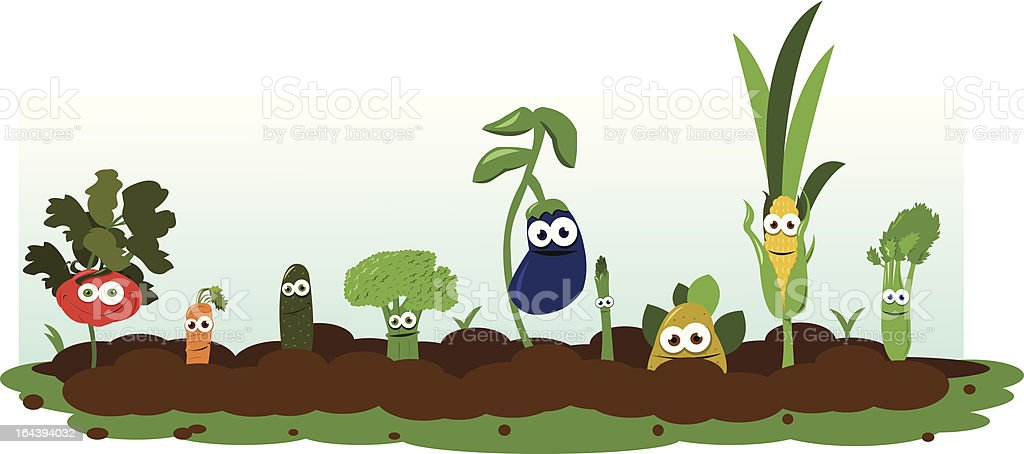 Funny Veggie Garden royalty-free stock vector art