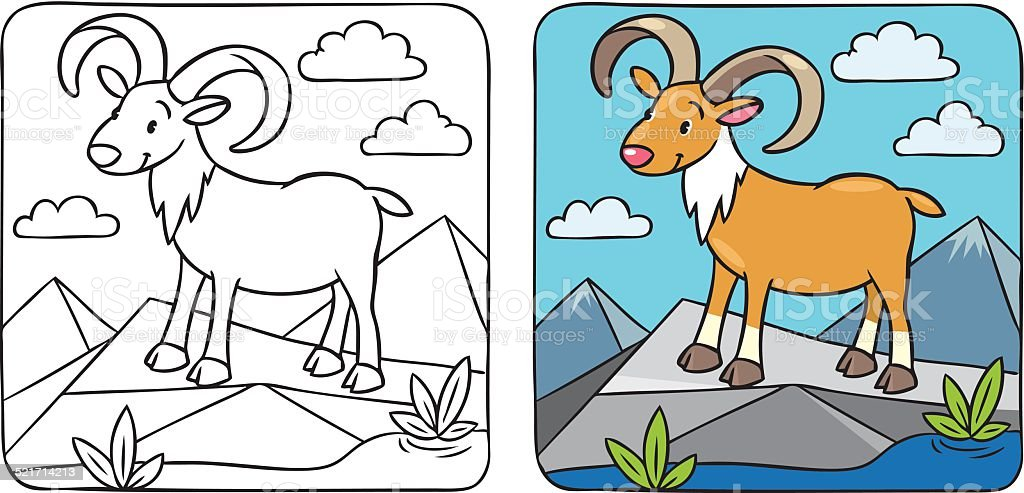 Funny wild urial or ram coloring book vector art illustration