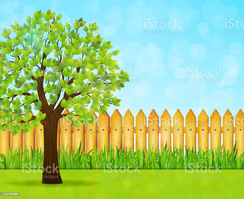 Garden background with green tree and wooden fence vector art illustration