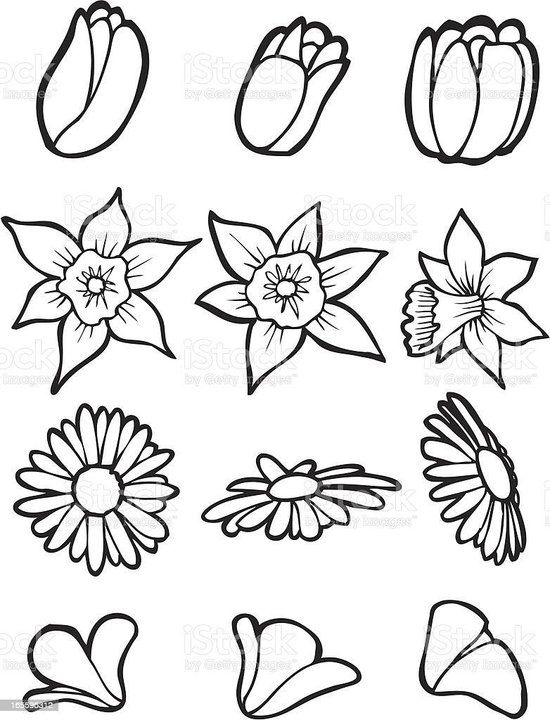 Garden Flower Line Art royalty-free stock vector art