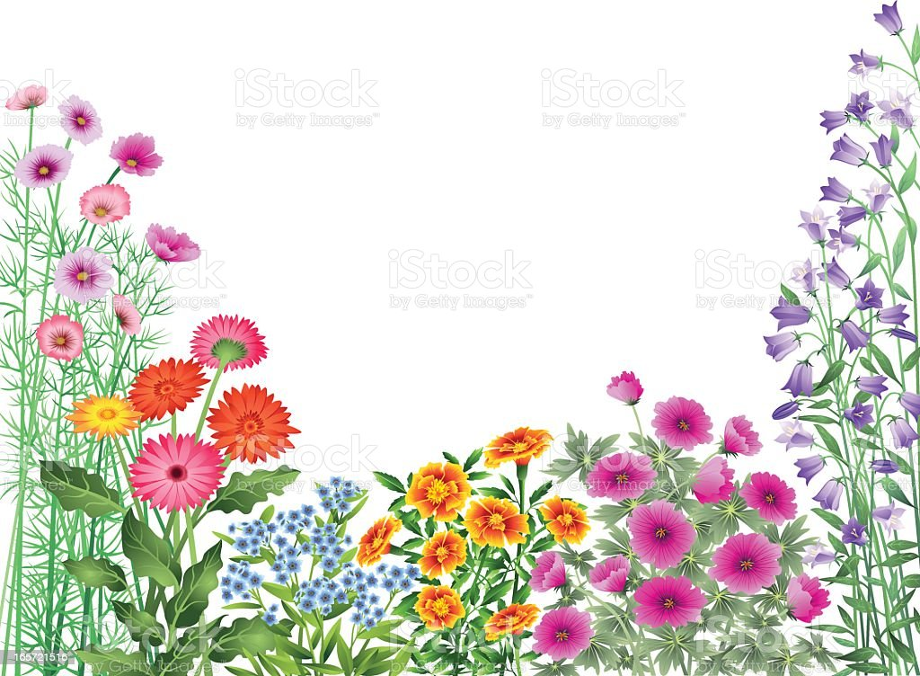 Garden Flowers Border vector art illustration