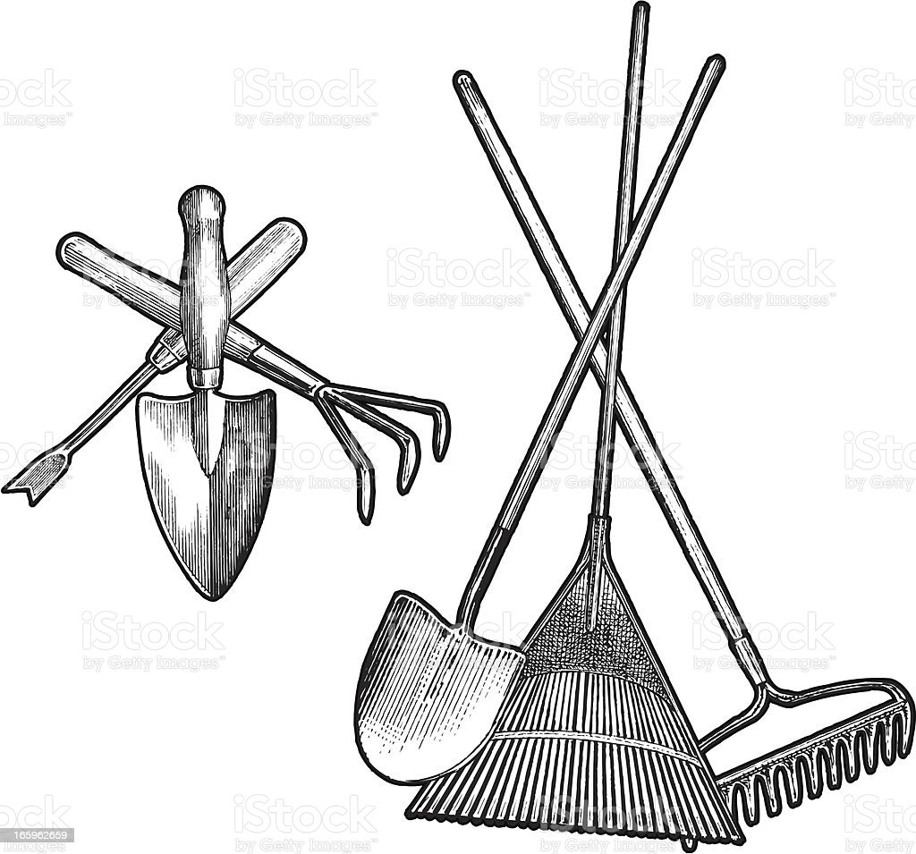 Yard Tools Clip Art : Garden tool design groupings rake shovel hoe stock vector