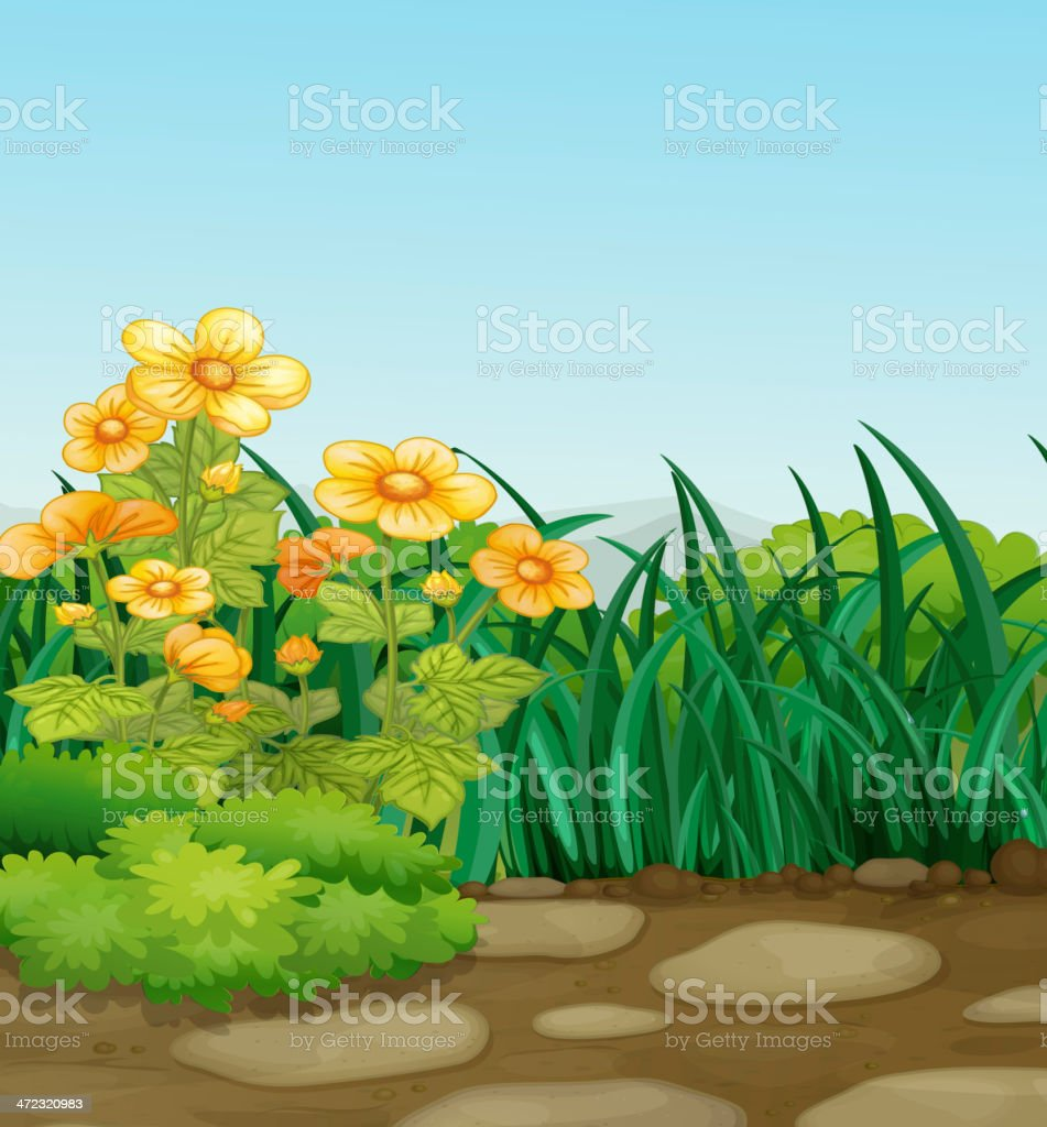 garden royalty-free stock vector art