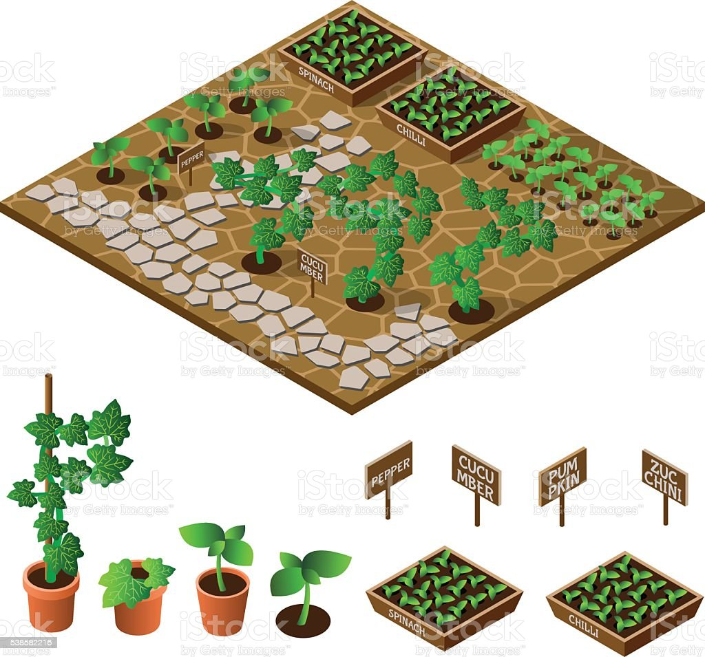 Garden vector art illustration