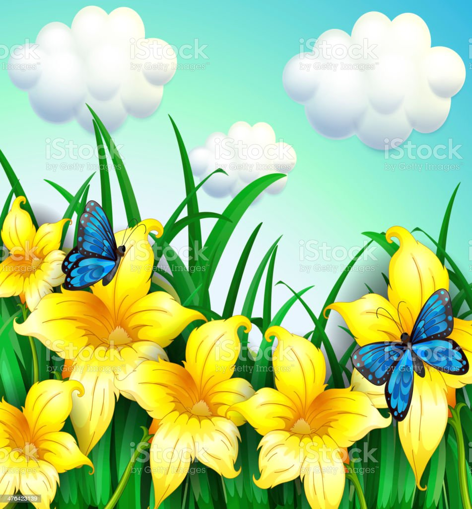 Garden with yellow flowers and blue butterflies royalty-free stock vector art