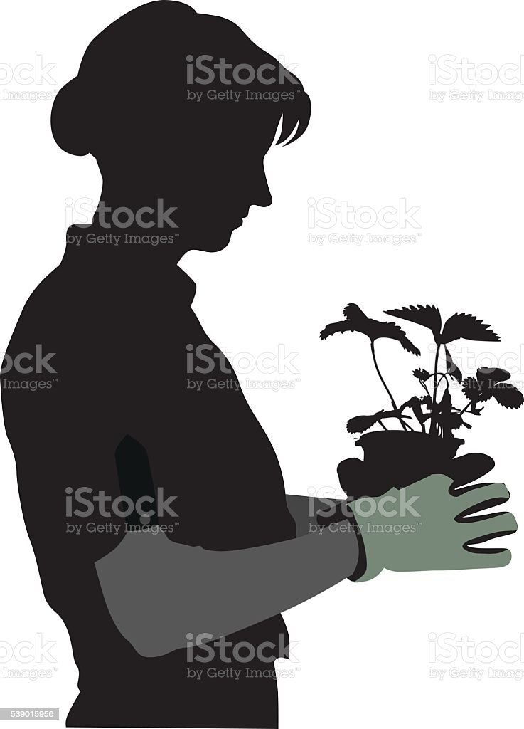 Gardener Silhouette And Strawberry Plant vector art illustration